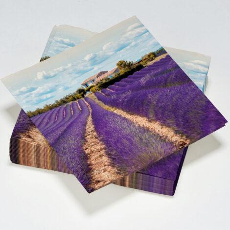 serviettes décorées en papier Le Nappage