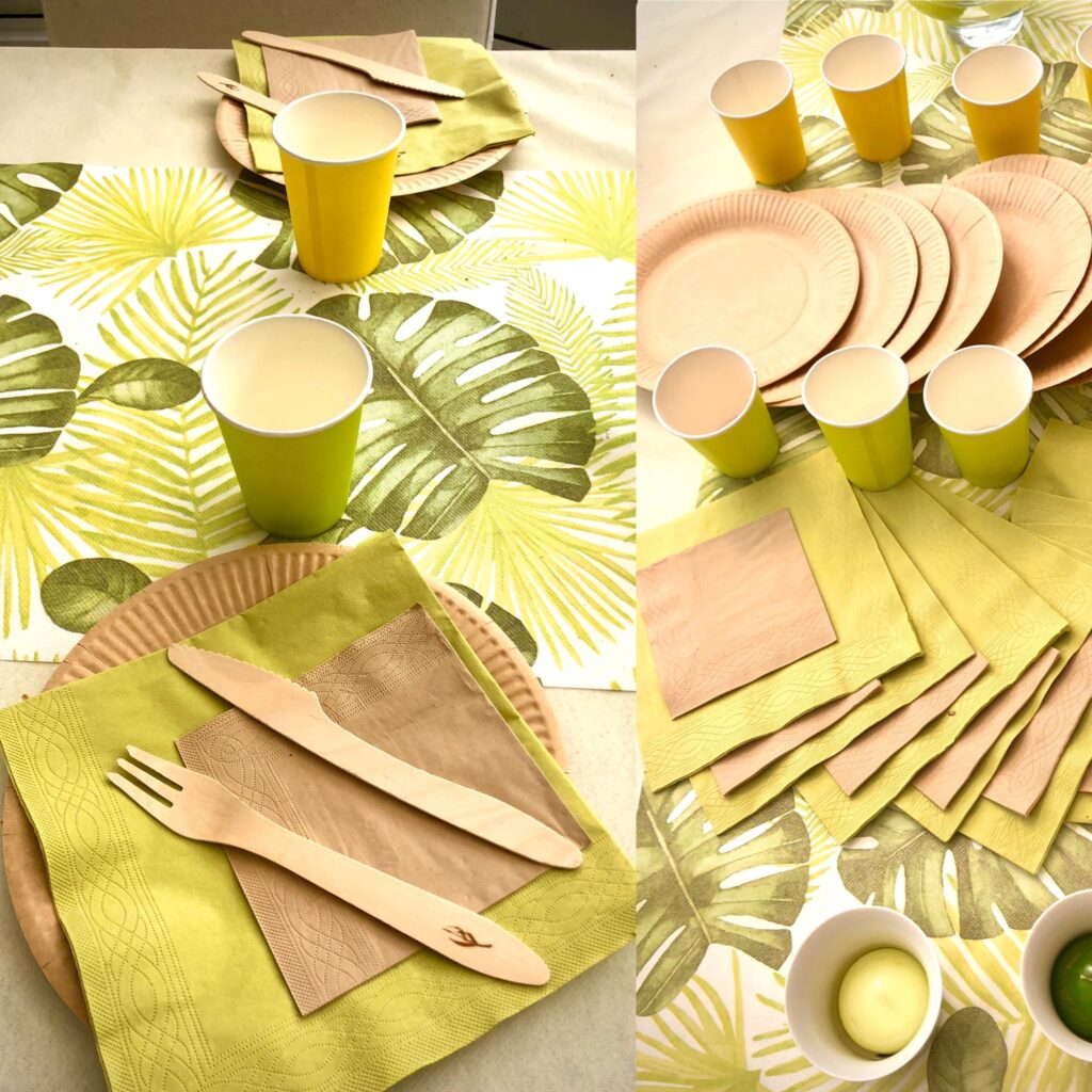 table d'ambiance de vaisselle jetable serviettes assiettes couverts